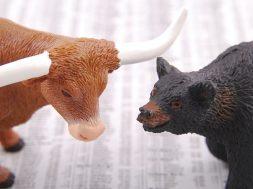 bull-1885566_640